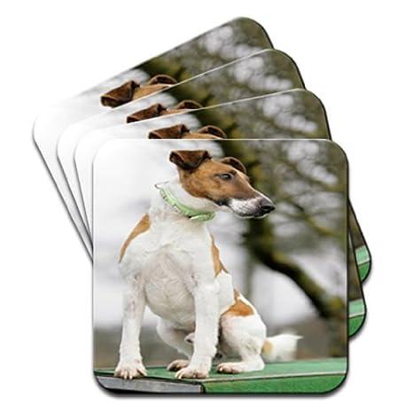 De perro Fox Terrier sentado caseta juego de 4 posavasos de madera Premium: Amazon.es: Electrónica