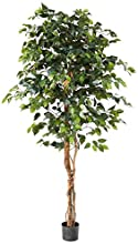 Nearly Natural 6ft. Ficus Artificial Trees, Green