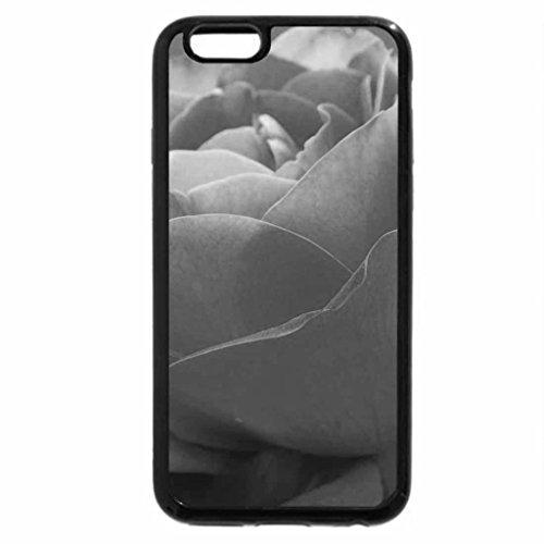iPhone 6S Plus Case, iPhone 6 Plus Case (Black & White) - delicate rose