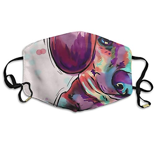 - Zafmask Colourful Dog Mask Can Be Washed Reusable N95 Mask One Size Multiple Colors