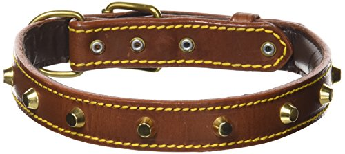 Petego La Cinopelca Padded Leather Dog Collar with Studs Brown, Fits 21 Inches to 24 Inches
