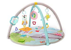 Amazon Com Taf Toys Baby Play Gym Thickly Padded Soft