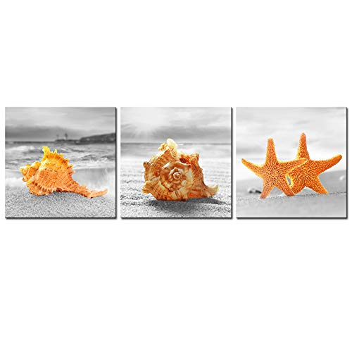 Nachic Wall - Seashell Wall Decor for Bathroom 3 Piece Startfish Seashell in Black and White Beach at Sunrise Pictures Wall Art Ocean Coastal Canvas Stretched and Framed Ready to Hang