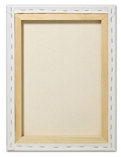Fredrix T5044A 48 in. x 60 in. Red Label Standard Stretched Canvas Pack Of 2