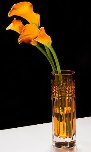 Amazon Waterford Fleurology Tina 9in Amber Bud Vase By