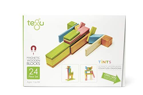 24 Piece Tegu Magnetic Wooden Block Set, - Handmade Magnet Wooden