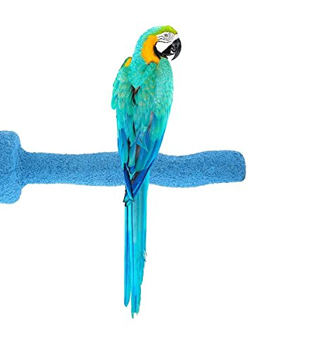 Sweet Feet and Beak Thermal-Lite Natural Patented Perch, Large – Blue- Perfect for Keeping Your Bird's Feet and Beaks (African Grey Parrot Breeder)