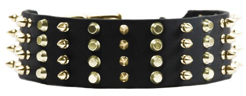 Dean & Tyler 4 Row Combo Dog Collar with Brass Spikes/Studs/Buckle, 38 by 2-1/4-Inch, Black