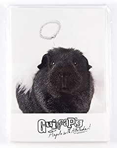 Guinea Pig Angels with Attitude