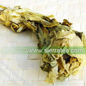 Amazon sierra tea dried wild tianshan snow lotus flowers wild sierra tea dried wild tianshan snow lotus flowers wild saussurea one flower mightylinksfo