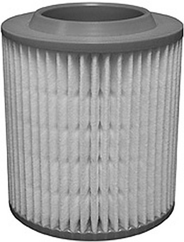Hastings AF1242 Air Filter Element