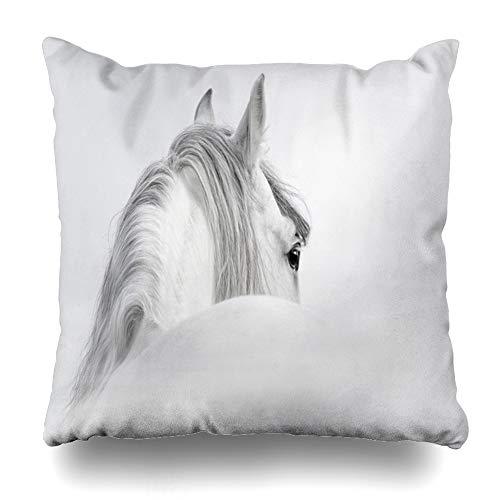 Ahawoso Throw Pillow Cover Mist White Gray Andalusian Horse Eye Head Closeup Fog Stallion Home Decor Pillow Case Square Size 20x20 Inches Zippered Pillowcase