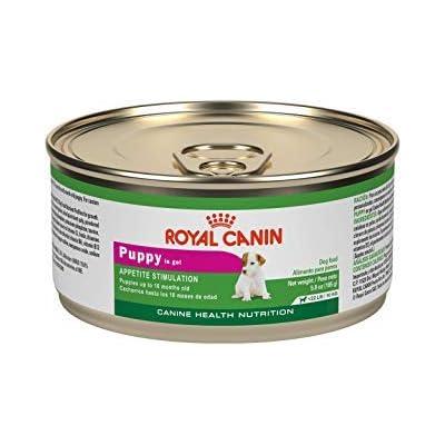 Royal Canin Puppy Appetite Stimulation Canned Dog Food 24/5.8 oz