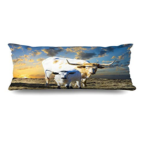 Texas Longhorns Body Pillow - DIYCow Body Pillows Covers Young Longhorn Cow Grazing Texas at Pasture Wildlife Parks Outdoor Rural Cushion Case Pillowcase Home Sofa Couch Rectangular Size 20 x 54 Inches Pillowslips