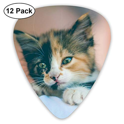 - 351 Shape Classic Guitar Picks Cat Image Plectrums Instrument Standard Bass 12 Pack