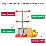 1.6 Gal Fruit Wine Press - 100% Natural Juice