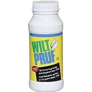 Wilt-Pruf Concentrate Qt 12