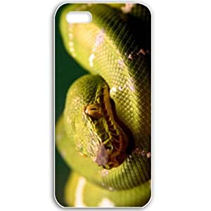 Apple iPhone 5 5S Cases Customized Gifts For Animals A Green Snake Wide Birds Animals White