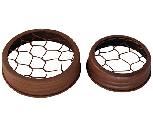 Rusty Flower Organizer Frog Lid for Mason Jars (3 Pack, Wide Mouth)