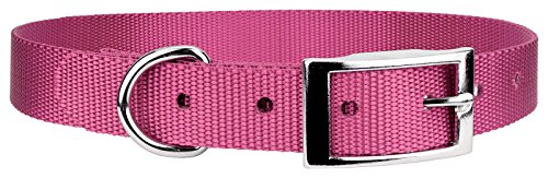 Country Brook Design | Rose Nylon Deluxe Traditional Collar - Extra Large ()