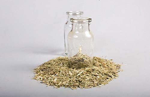 HIGH Germination Seeds:Passion; Incarnata, Organic; 114g
