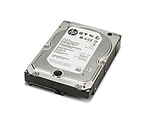 HP 4TB SATA 7200 Hard Drive - One-year limited Additional support is available 24 hours a day, seven days a week by phone as well as online support forms.\nNOTE: Certain restrictions and exclusions apply. Consult the HP Customer Support Center for details.