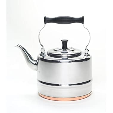 BonJour Tea Stainless Steel and Copper-Base Gooseneck Teapot / Teakettle, 2-Quart