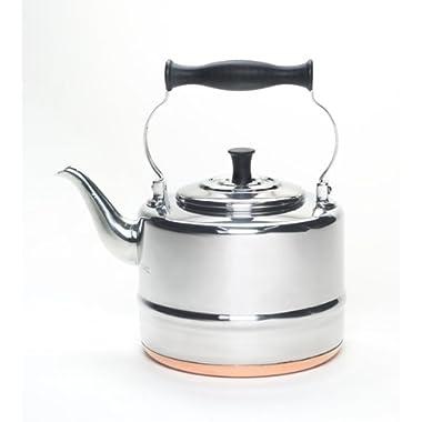 BonJour Tea Stainless Steel and Copper-Base Gooseneck Teapot / Teakettle, 2-Quart