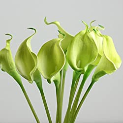 Lily Artificial Flowers,Orangeskycn 10Pcs Mini Artificial Calla Wedding Flowers Bouquet Calla Lily Foam Decor (green)