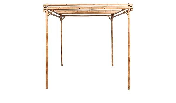 Irene - Pérgola de bambú para jardín, Patio, Veranda, árbol de Vino, Soporte para Plantas, Marco de Flores: Amazon.es: Hogar