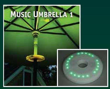 Outdoor Lighting And Speakers in Florida - 9