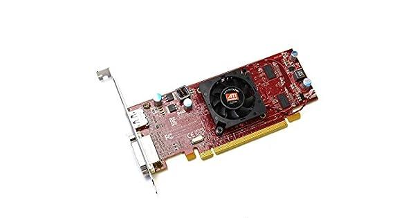 Amazon.com: NUEVO ORIGINAL DELL 3y14 F ATI Radeon HD4550 ...