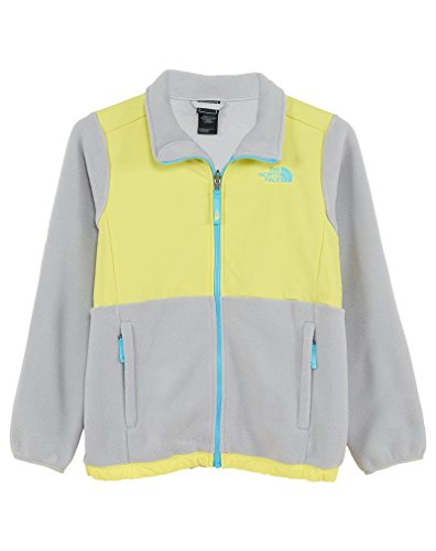 Price comparison product image The North Face Denali Jacket Girls Recycled High Rise Grey GXL