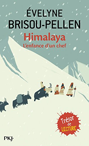 Himalaya Poche – 21 juillet 2000 Brisou-Pellen Pocket 2266106481 9782266106481_MESSADP_US