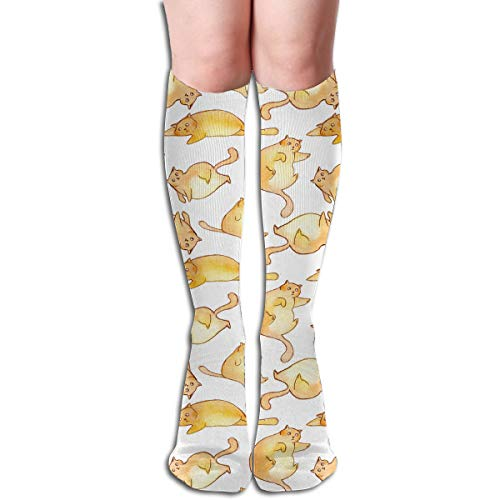 Bandnae 19.68 Inch Compression Socks Cat Fat Yellow High Boots Stockings Long Hose for Yoga Walking for Women Man