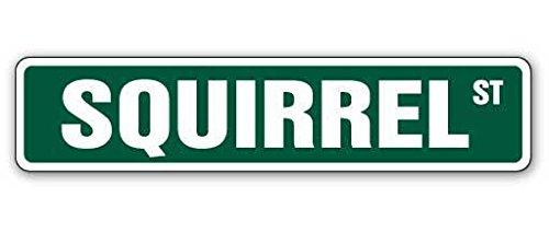 Cortan360 SQUIRREL Street Sign xing crossing nuts roadkill hunt  Indoor/Outdoor   8