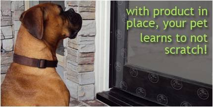 Amazon.com : Scratch N Scram   Stops Dog Scratches On Doors. Protects  Surfaces. Peel, Stick Protect! : Scratchu0027n Scram : Scratch Repellents : Pet  Supplies