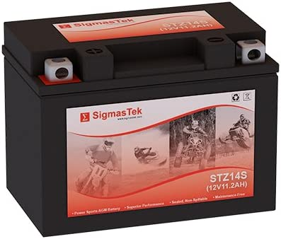 Replacement YTZ14S Motorcycle Battery