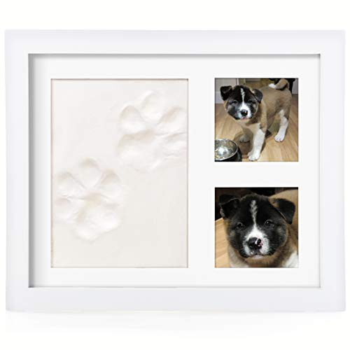 Baby Leon Pet Paw Print Kit | Personalized Gift for Dog & Cat Lovers | Clay Picture Frame Keepsake ()