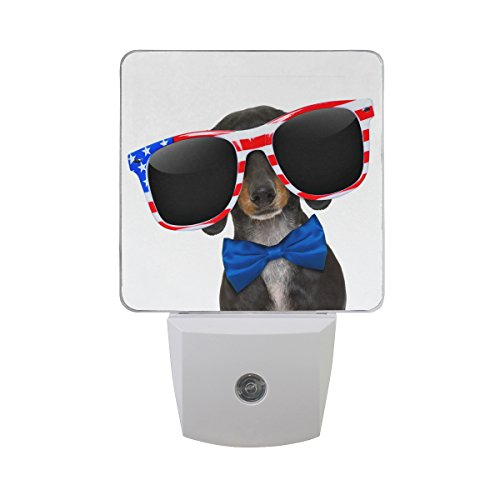 Naanle Set Of 2 Dachshund Dog Wearing American Flag Sunglasses Blue Bow Auto Sensor LED Dusk To Dawn Night Light Plug In Indoor for - Sunglasses Inside Wearing