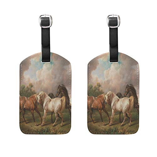 MUOOUM Horse White Brown Grassland Luggage Tages Travel Labels Suitcase Bag Tag with Name Address Cards 2 Pcs Set -