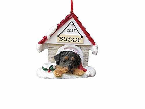 Doghouse Ornament - Rottweiler Dog Ornament Hand Painted and Personalized Christmas Doghouse Ornament with Magnetic Back (Dog Christmas Ornament Personalized)