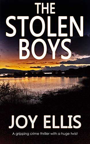 THE STOLEN BOYS a gripping crime thriller with a huge twist (JACKMAN & EVANS Book 5) ()