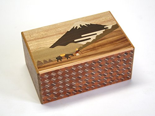 Japanese Puzzle Box 21steps Hakone Pass