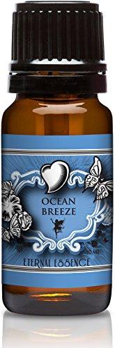ocean-breeze-premium-grade-fragrance-oil-10ml-scented-oil