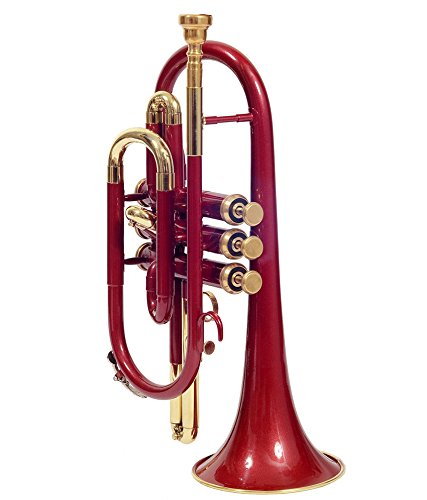 Cornet, Bb, RED and Brass With Case and M/P shry060