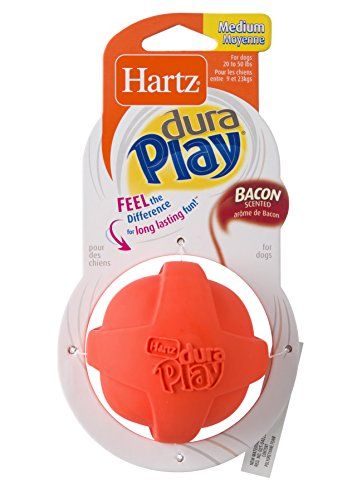 HARTZ Dura Play Bacon Scented Dog Ball - Medium (Colors Vary)