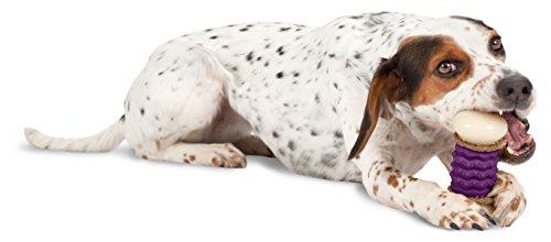 PetSafe  Busy Buddy  Nobbly Nubbly Dog Toy, Large