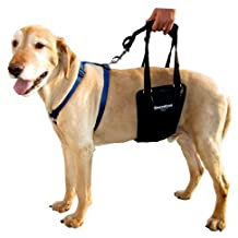 GingerLead Dog Support and Rehabilitation Harness, Medium Sling (Large Male)
