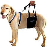 GingerLead Dog Support & Rehabilitation Harness - Medium / Large Male Sling by GingerLead